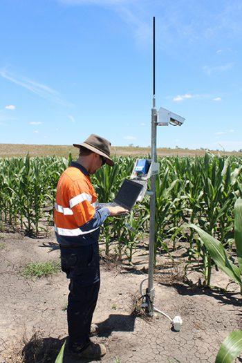 soil moisture quality detector